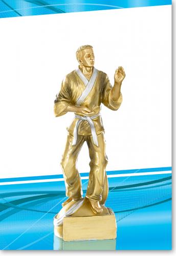 Karatepokal 20 cm